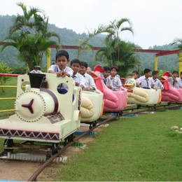 Amusement Rides for kids